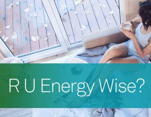 R U Energy Wise